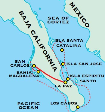 Baja California Among The Great Whales Adventure